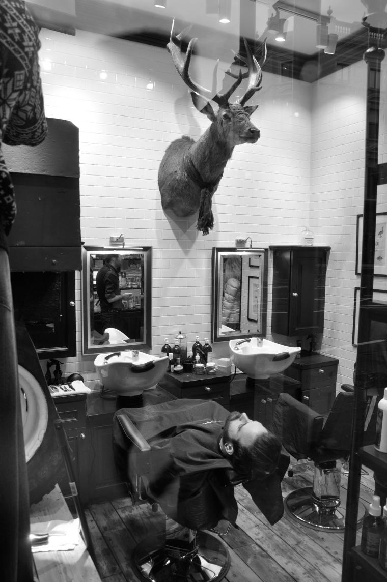 deer shaving ?